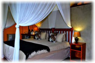Lion Tree Top Lodge Accommodation in Hoedspruit Great Kruger Area