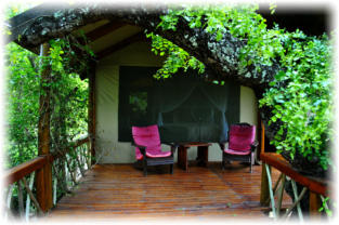 Luxury Tree Top Accommodation near Orpen Gate